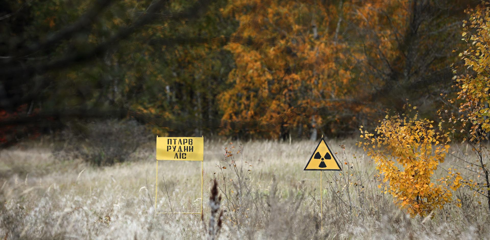Чернобыльские пожары пустили на самотёк