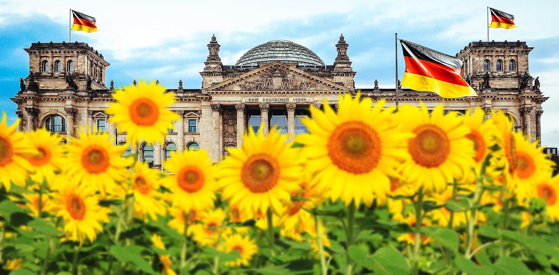 Политика Германии окрашивается в зелёный