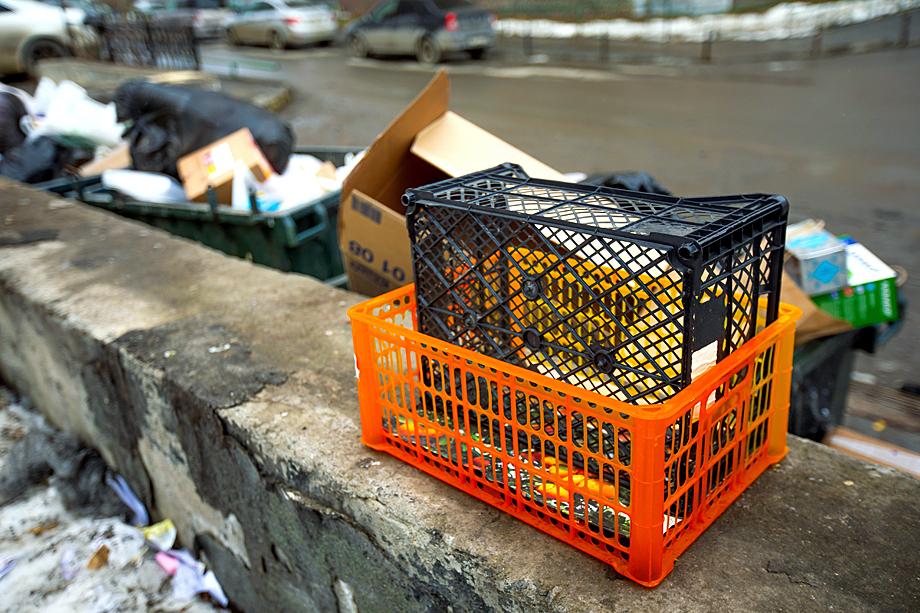 Придомовые контейнерные площадки не выглядят эстетично из-за несвоевременного вывоза мусора