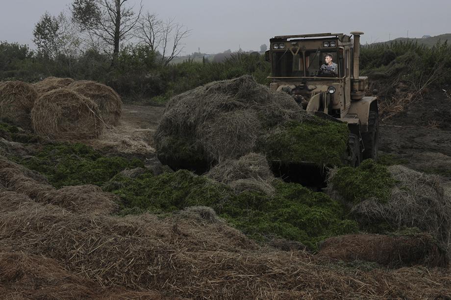 Работы на фермерском хозяйстве «Успех». Деревня Сарсы, 2017 год