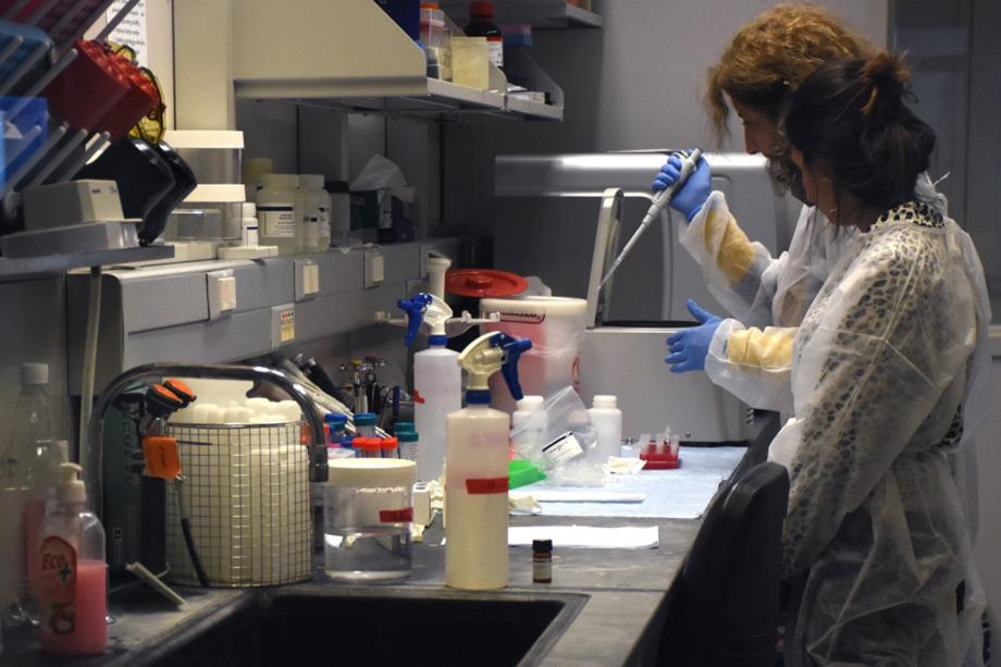 Сотрудницы лаборатории имени Ричарда Лугара в Грузии, которую подозревают в разработках биологического оружия.