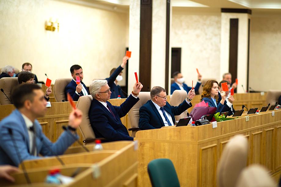 Депутаты не уверены, что на выплаченные деньги будут куплены продукты