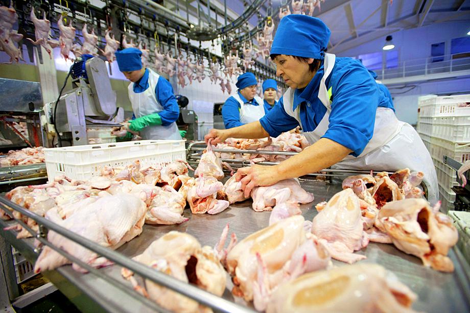 Потеря птицефабрики «Рефтинская» лишит региональное правительство возможности контролировать внутренний рынок мяса птицы и яйца.