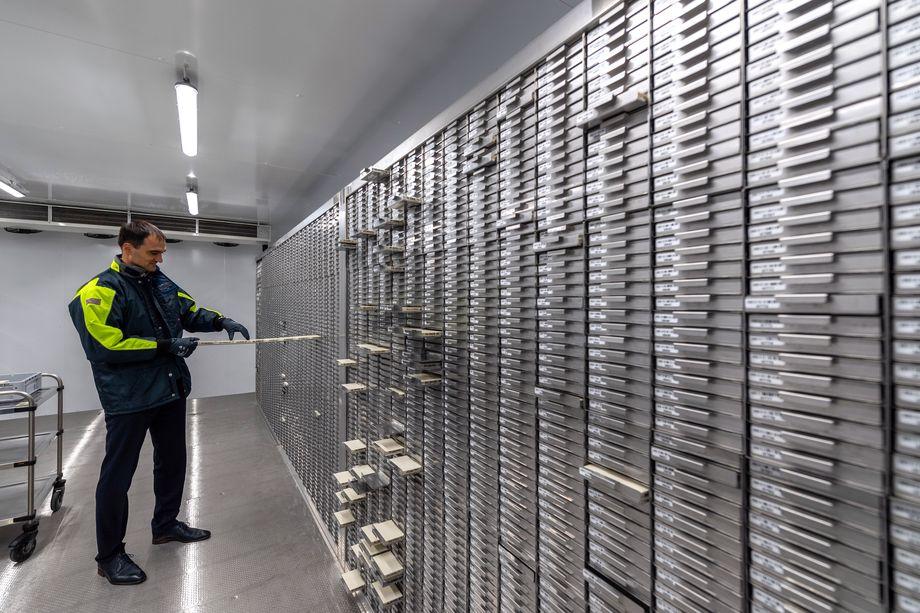 Во всём мире уже достаточно давно используют базы данных ДНК в различных целях. На фото: Винзенц Ланге, управляющий директор DKMS Life Science Lab, в хранилище очищенных образцов ДНК доноров костного мозга. Дрезден.