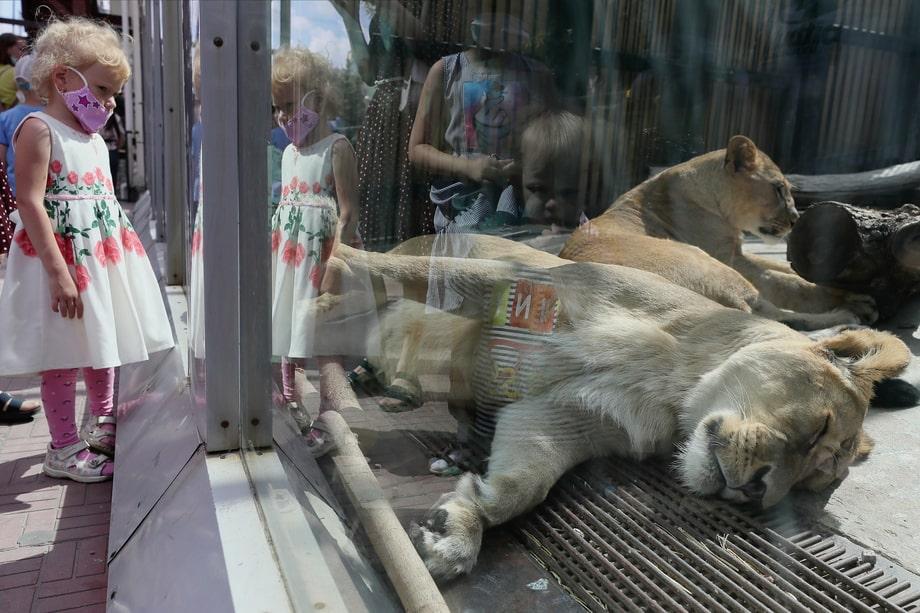 Екатеринбург. Первые посетители Екатеринбургского зоопарка после снятия ограничений.