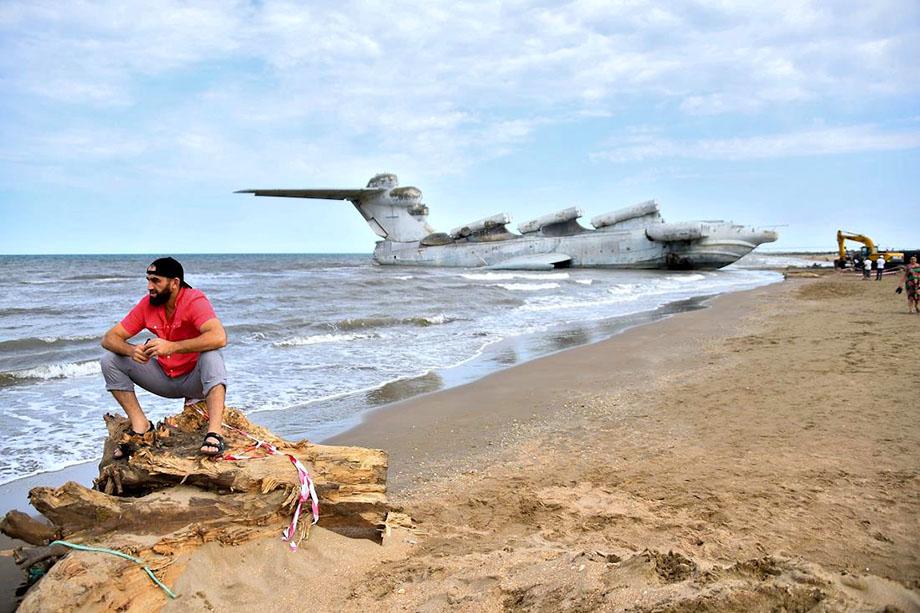 Единственный в мире гигант нашёл пристанище в филиала парке «Патриот» Южного военного округа.