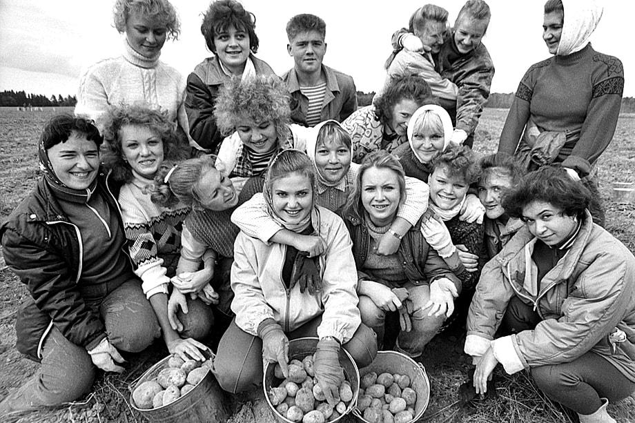 В советское время августовские поездки «на картошку» были аналогом современного тимбилдинга.