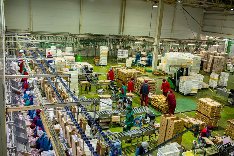 Сегодня порядка 70 процентов представленных в продаже машин для пищевой промышленности России – иностранного производства.