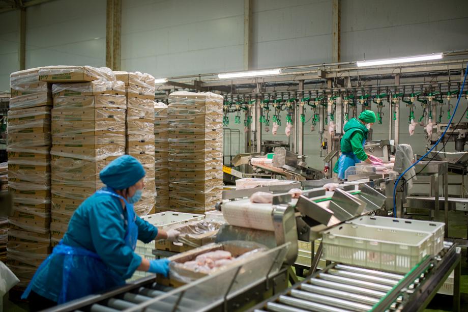 После обновления производства доля готовой продукции и полуфабрикатов в продуктовой линейке фабрики возросла до 40–60 процентов.