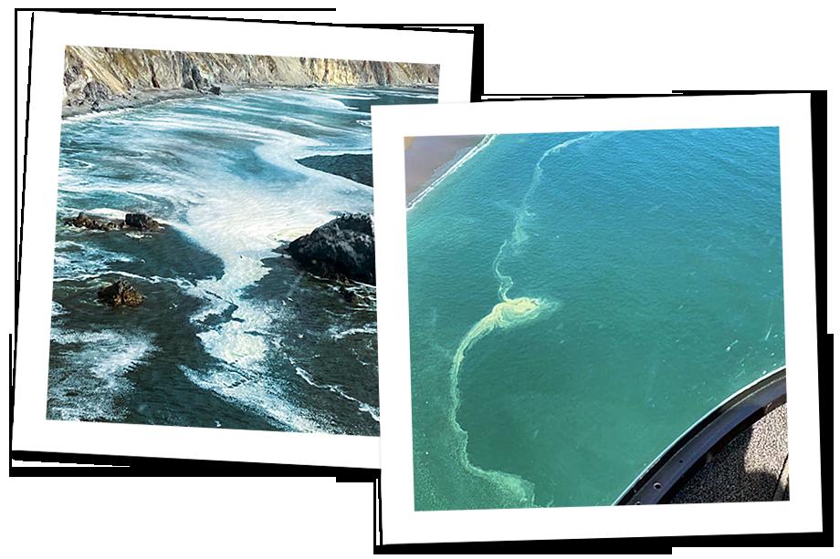 Фотографии загрязнения океана из аккаунта Instargam школы сёрфинга Андрея Морозова Snowwave.