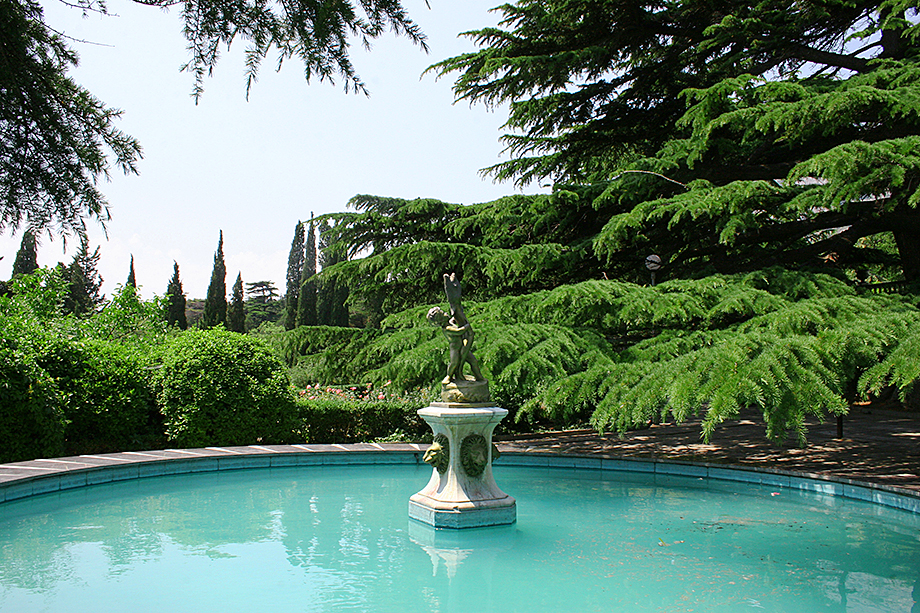 На территории парка санатория «Форос» большинство деревьев реликтовые.
