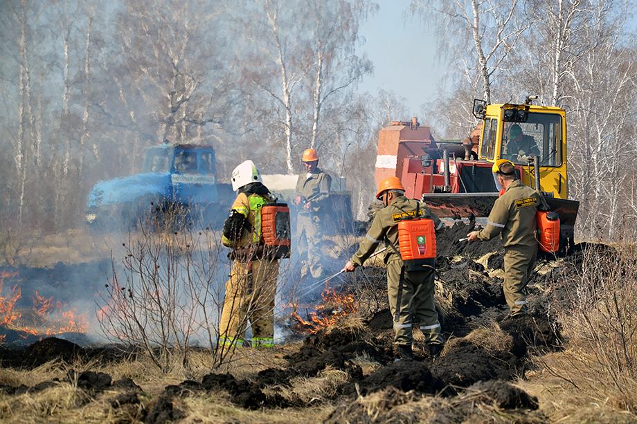 Почти сто процентов лесных пожаров происходит из-за халатности и безответственности людей.