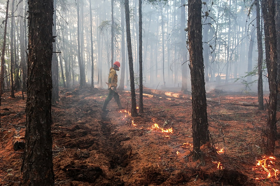 В Челябинской области из-за туристов рядом с нацпарком «Зигальга» произошёл пожар.