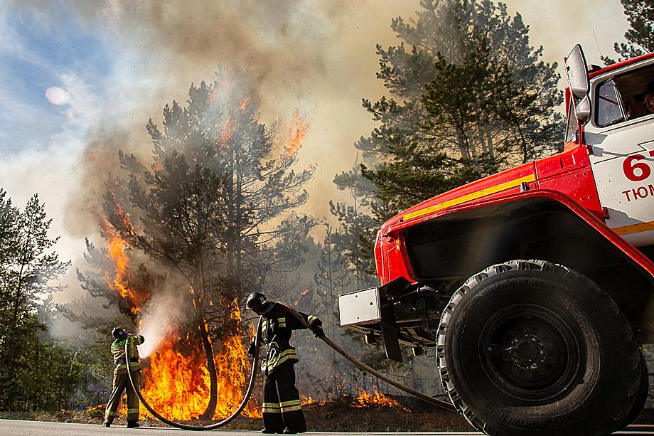 Лесные пожары в условиях такой погоды остановить крайне сложно.
