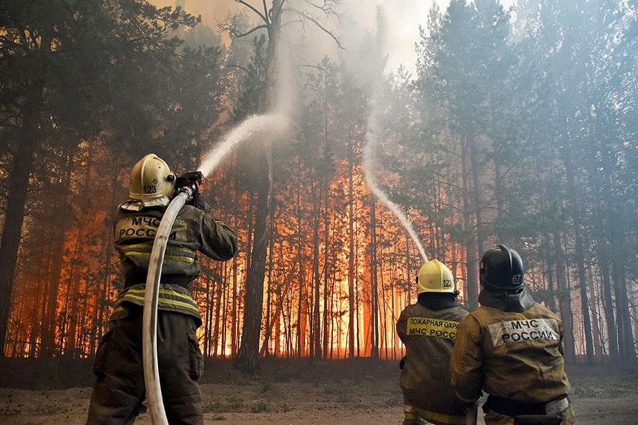 Сейчас тюменские спасатели продолжают ликвидацию крупного лесного пожара в районе села Богандинского.