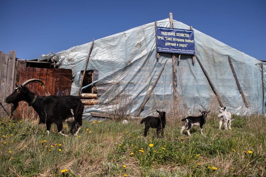 Местным фермерам приходится самим наводить порядок на брошенных участках – земля должна «работать».