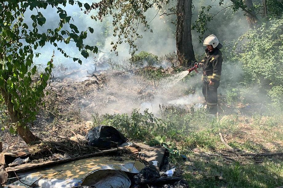 Возгорание тополиного пуха в парке Маяковского.