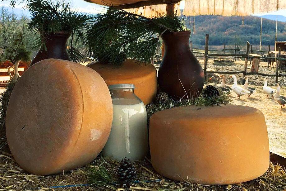 Ферма «Нюся» уже несколько лет занимается в Крыму крафтовыми сырами.