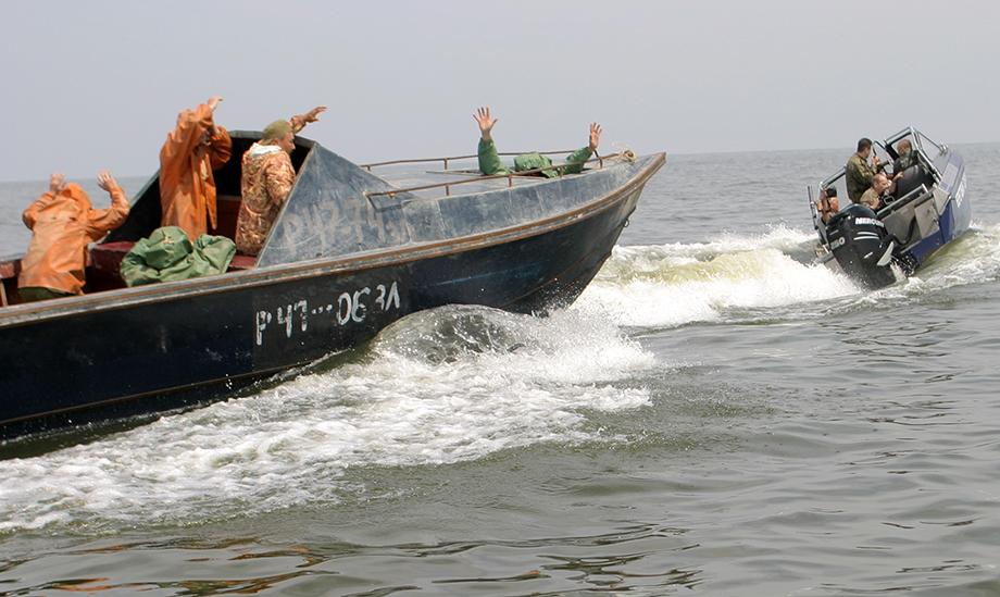 Отсутствие контроля за рыбохозяйствами области привело к поголовному браконьерству.