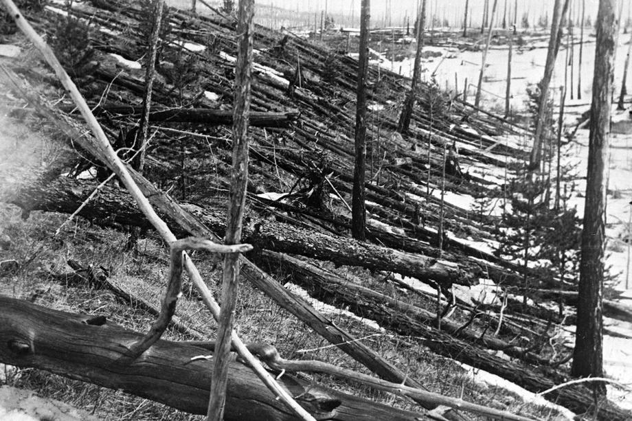 Из-за взрывной волны Тунгусского болида был уничтожен лес и местные животные.
