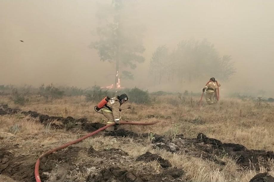 Площадь возгораний в Челябинской области достигла 4800 квадратных метров.