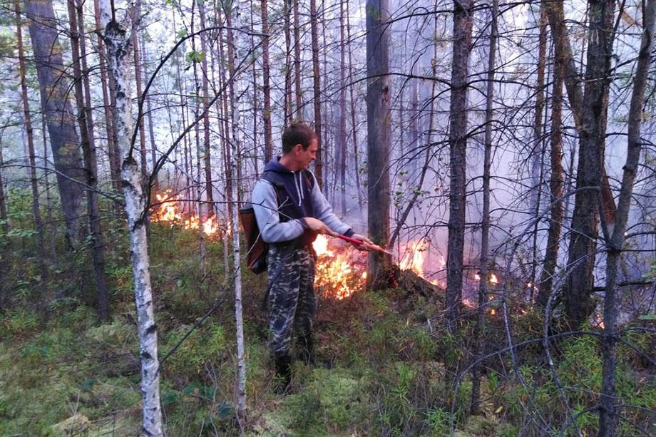 За сутки спасатели МЧС России и работники «Авиалесохраны» прокладывают 3 километра минерализированной полосы шириной 4 метра.