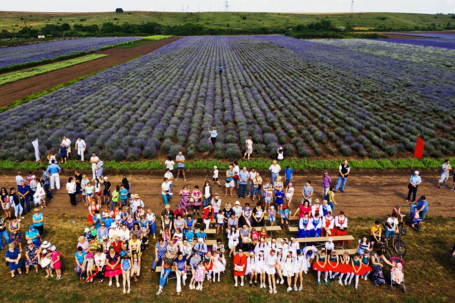 Участники фестиваля лаванды и розы на базе питомника эфиромасличных и лекарственных культур.