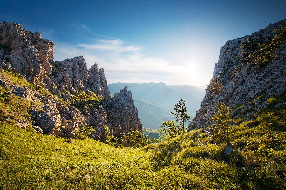 Скалы Перья Хапхала расположены на территории Хапхальского заказника недалеко от Алушты.